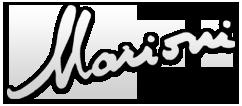 David Marioni | Luthier since 1989 | Geneva | Switzerland